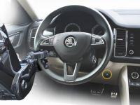 steering-logo_1.jpg
