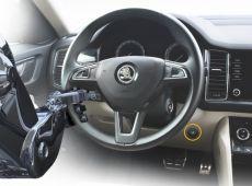 steering-logo.jpg